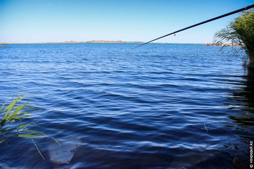рыболовное предприятие характеристика