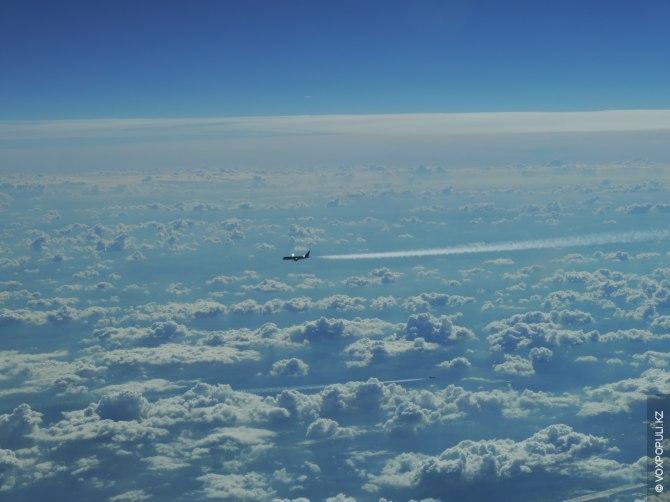 Сонник самолеты в небе надо мной