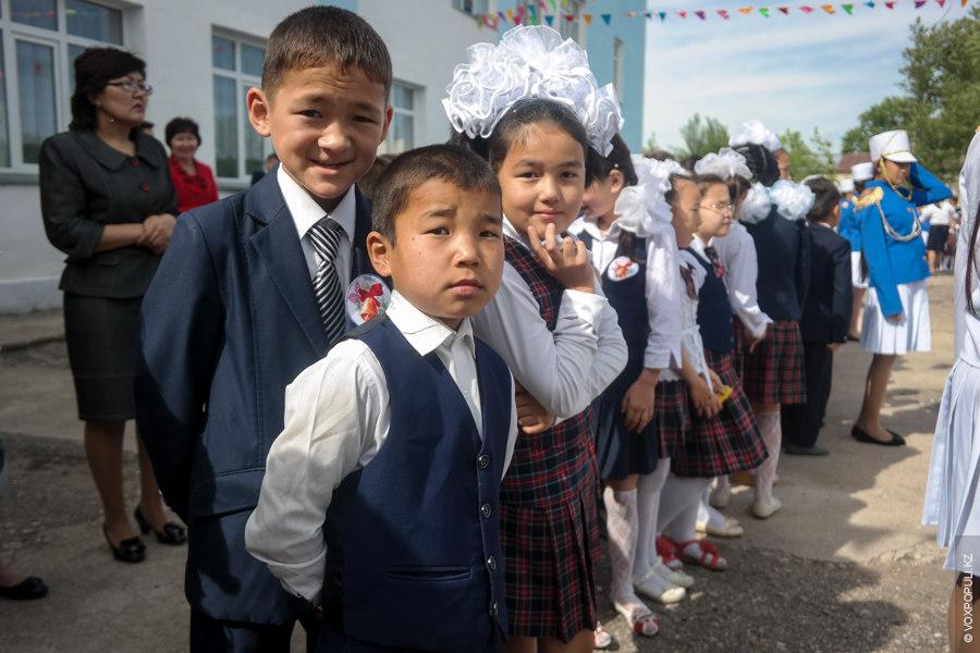 Проект «Дорога»: Тараз – Шымкент