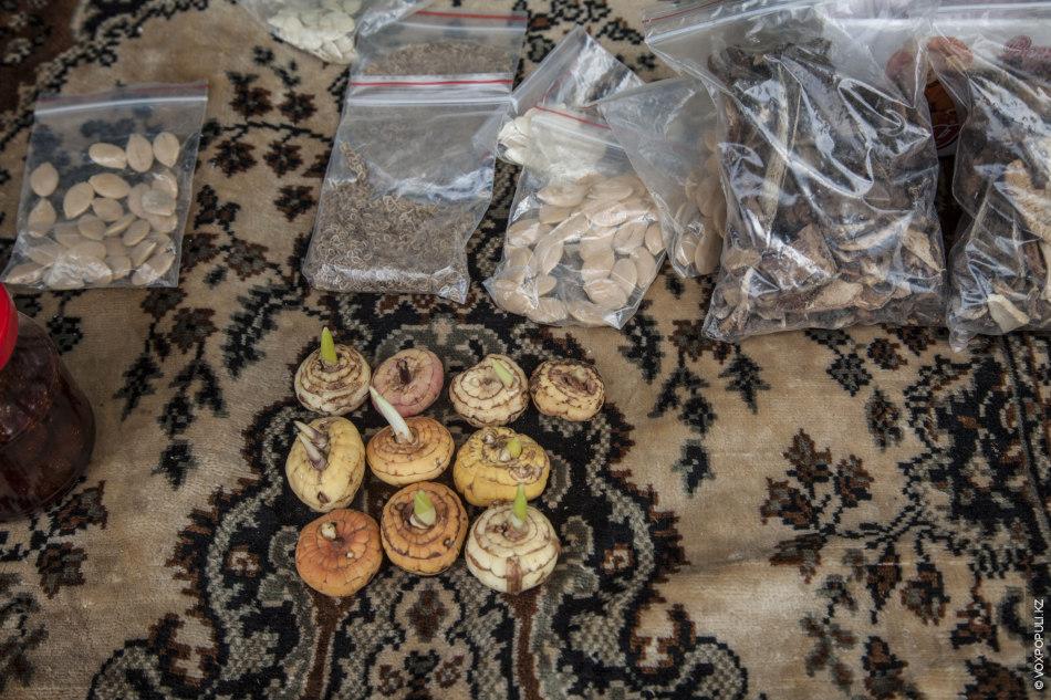 – Летом малину продаю, смородину, зимой – соленья, салаты всякие в банках, то, что осенью...