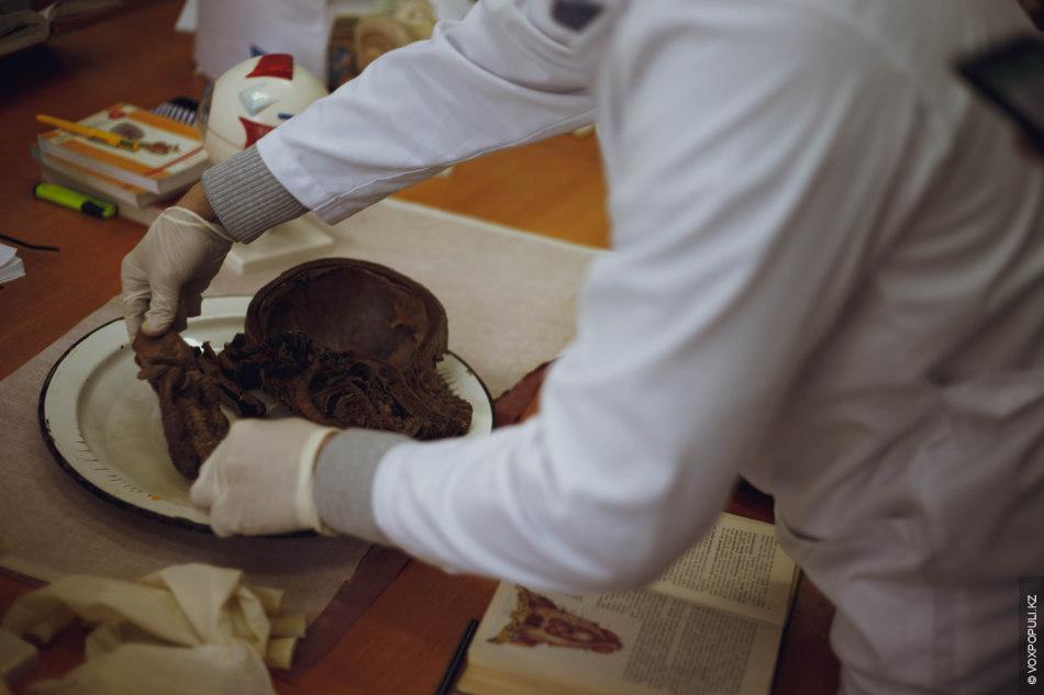 """Надев перчатки, Нуридин демонстрирует нам все, что лежит на учебном подносе: """"Саггитальный разрез черепной коробки..."""