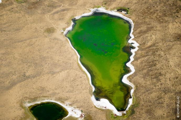 Соленое озеро в прибалхашской пустыне. Концентрация минералов здесь столь высока, что водоем считается лечебным. Что-то...