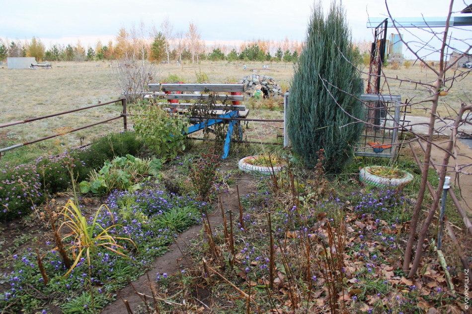 Огород тоже небольшой, но пенсионеры говорят, что делают запасы на всю зиму