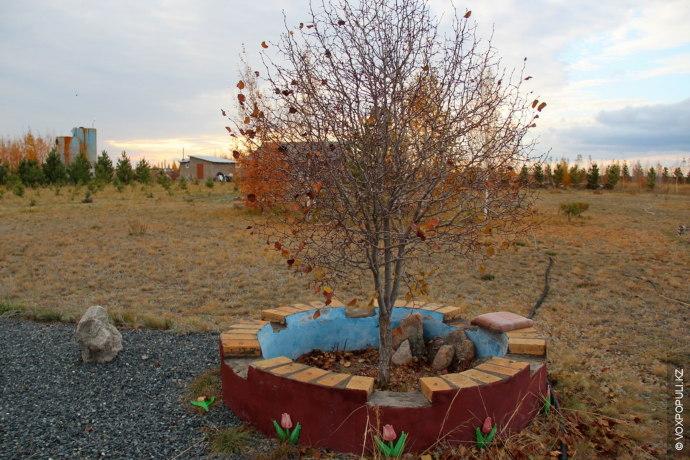 Сегодня здесь проживает семь семей, все высаживают деревья, которые опоясывают их поместья. Но круглый год...