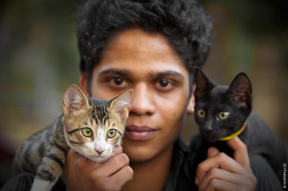 Котят зовут Багира и Тайгер