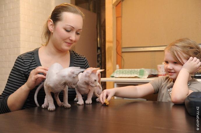 – Этих двух котят мы прозвали Хоттабычем и Психом. Первый с самого начала выбрал своим...
