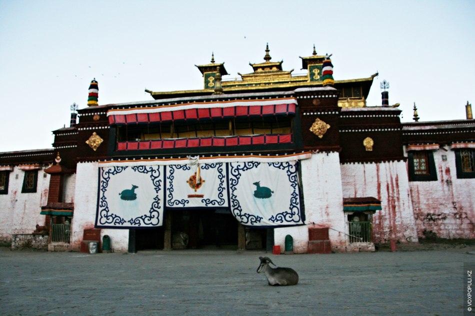 Недалеко от Лхасы находится первый буддийский монастырь – Самье, сооруженный во второй половине VIII века...