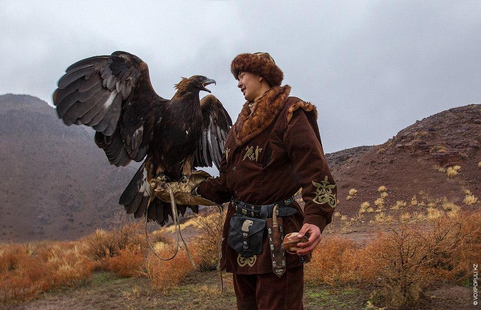 С 22 по 23 ноября в окрестностях Алматы прошли традиционные соревнования по охоте с ловчими...