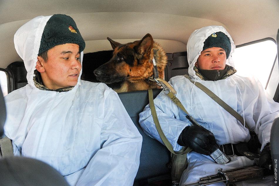 Тревожно-поисковая группа состоит минимум из двух бойцов – инструктора розыскной собаки и связиста-МЭПовца (мастера по...