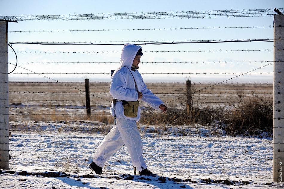 Зимой следы хорошо отпечатываются на снегу и КСП. Контрольная полоса применяется в качестве средства защиты...