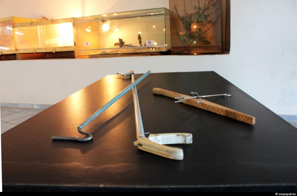 Инструменты, помогающие при работе со змеями (слева на право): - крючок - «хваталка» -...