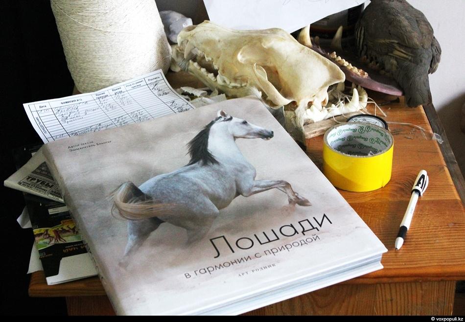 Прежде, чем начинать обшивать манекен шкурой, необходимо изучить топографию - расположение шкуры на живом животном....