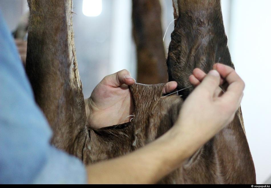 Только при умелом обращении со шкурой можно добиться правильного внешнего вида животного, динамики в позе...