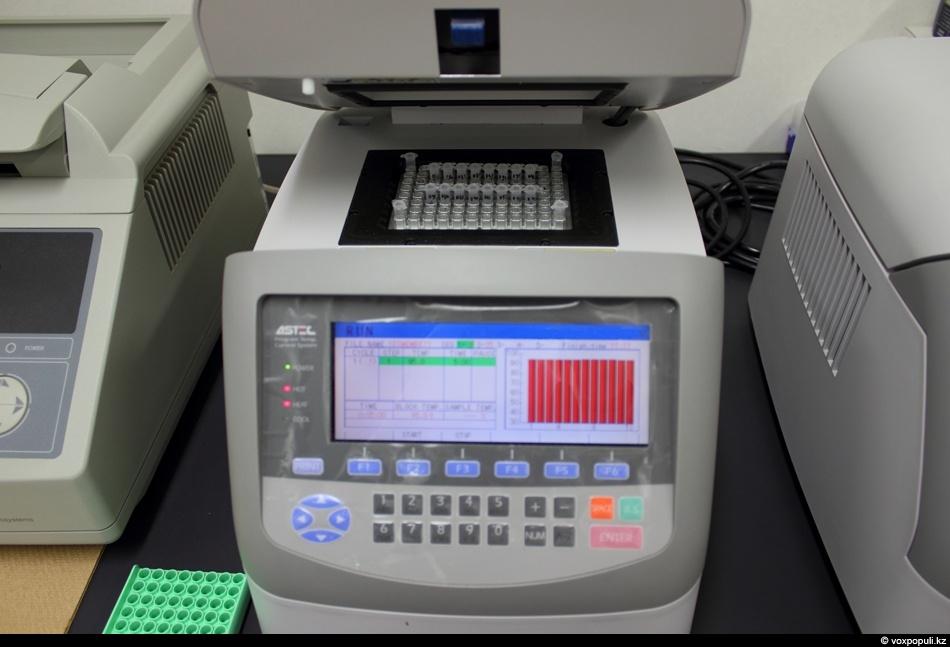 диагностика ПЦР количественного типа