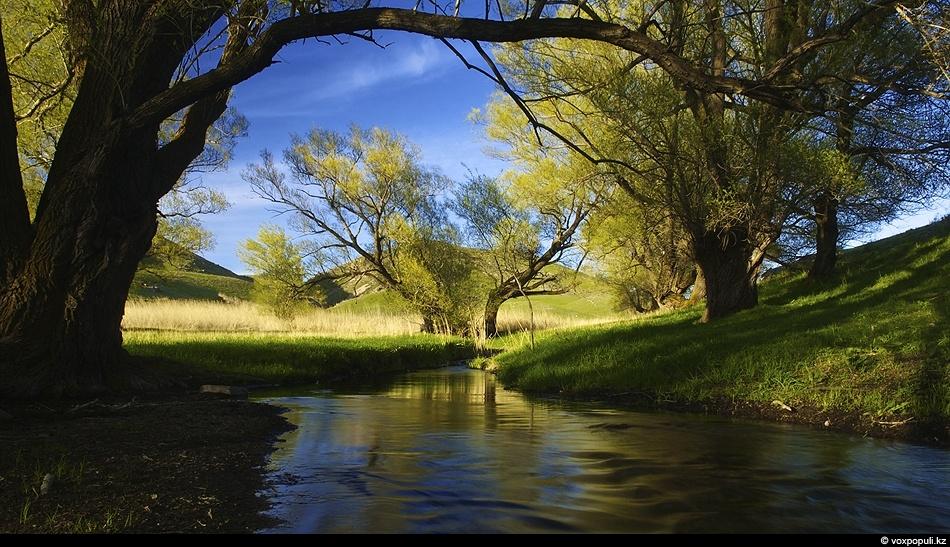 Речка Колгуты в горах Киндиктас. Кордайский район