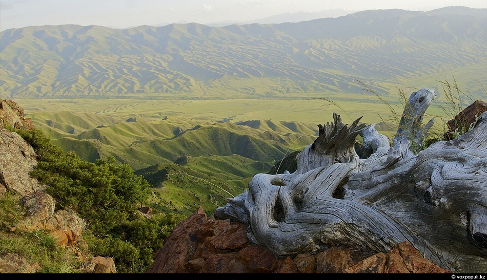 Долина реки Каракыстак. Луговской район. Кыргызский хребет