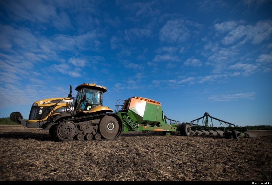 Как сеют пшеницу на севере Казахстана