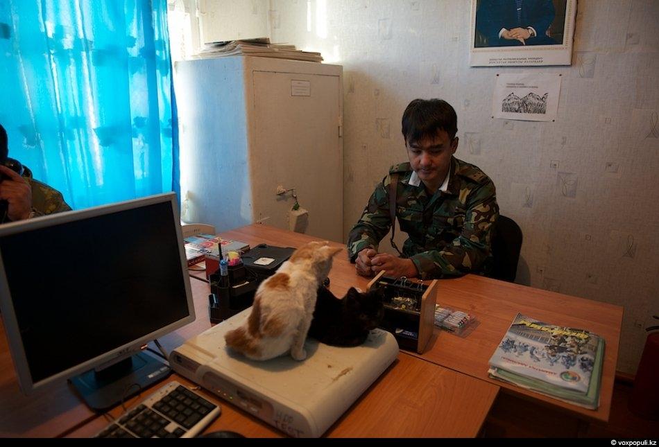 По мнению военнослужащего заставы, «на постах служат самые лучшие и выносливые солдаты – срочники и...