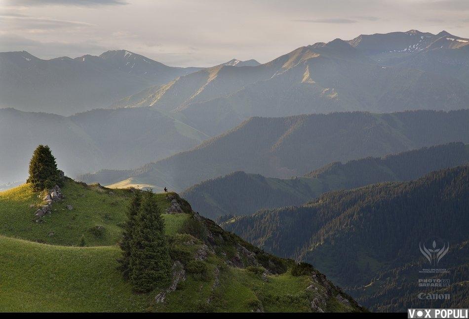 Высокогорное плато Табан-Карагай. За драконьими хребтами гор Заилийского Алатау бурлит река Чилик, самая многоводная в...